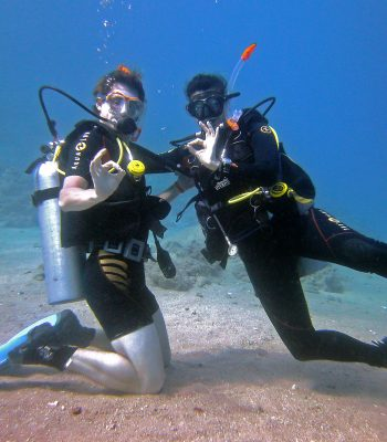 Open Water Diver Kurs bei Sunshine Divers